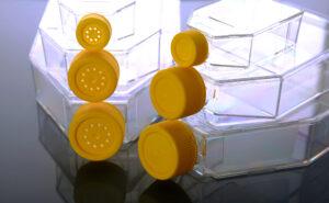 Cell Culture Flask, Plug Seal Cap, Non-Treated, Sterile