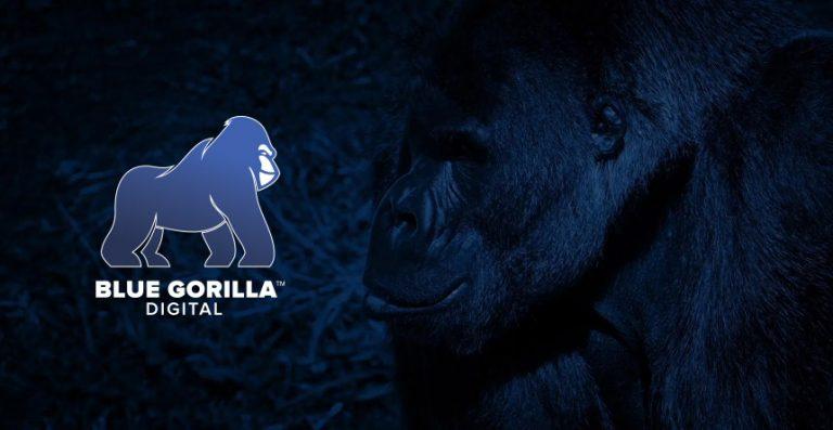 Blue Gorilla Digital – A Modern Advertising Agency