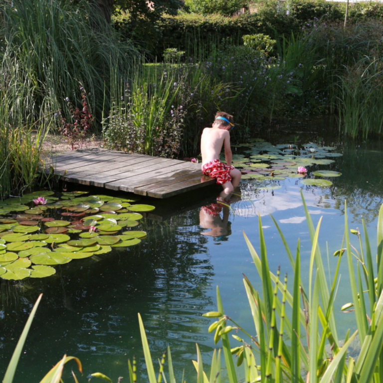 Ottawa Landscaping Services   Swimming Ponds