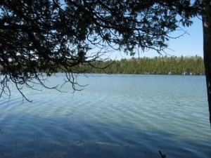 waterfrontloghome-3