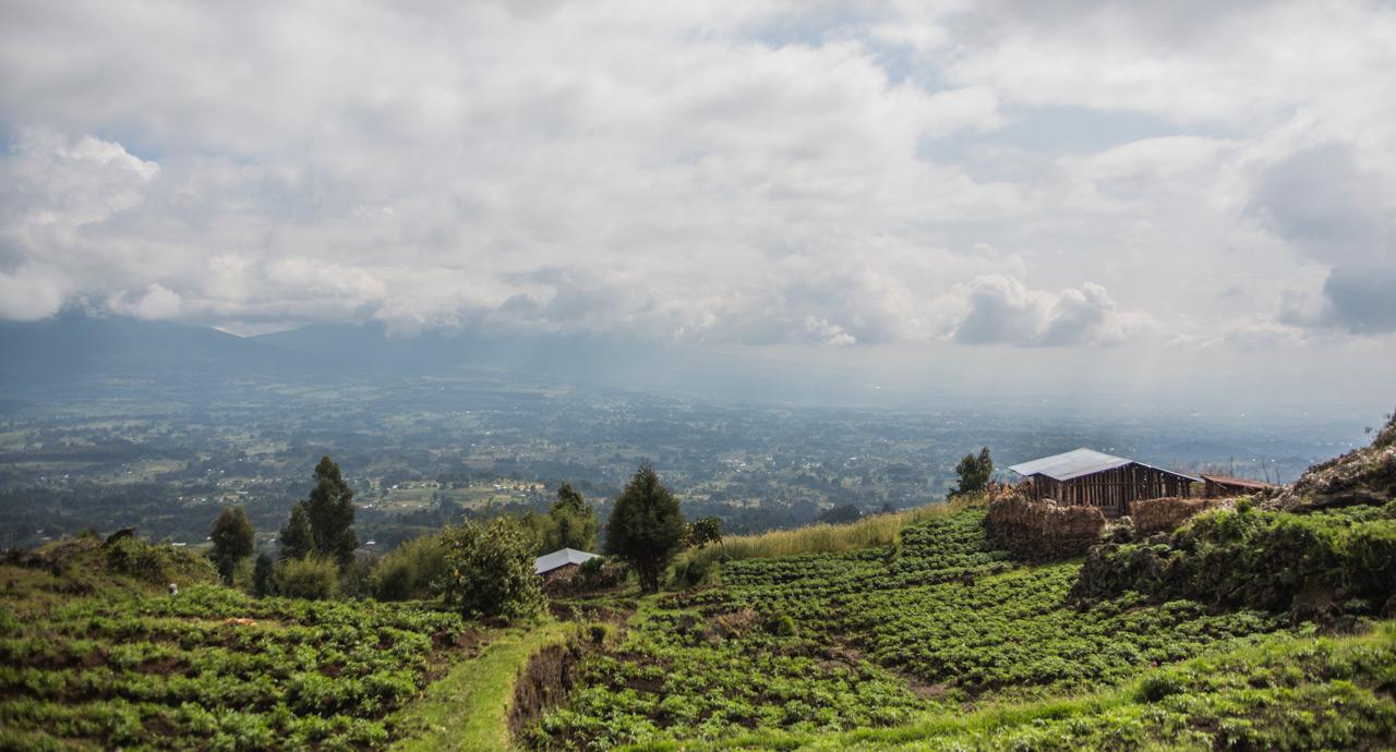 East Africa – Rwanda, Kenya & Tanzania – 13 days