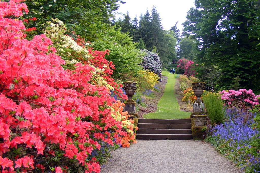 photo of landscaped walkway