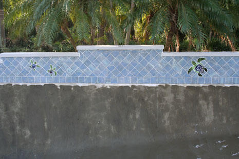 Pool Doctor Services
