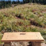 POP Point, custom benches
