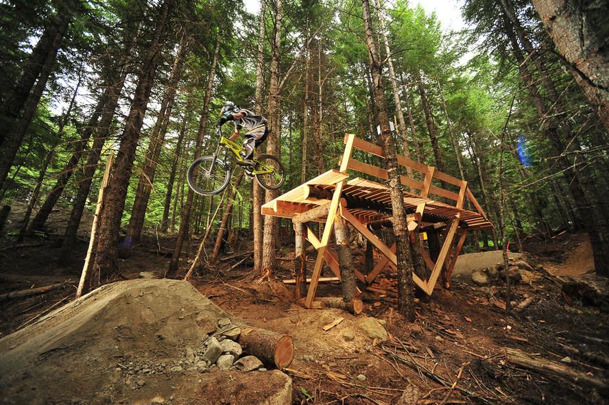 Expert wood feature - Drop
