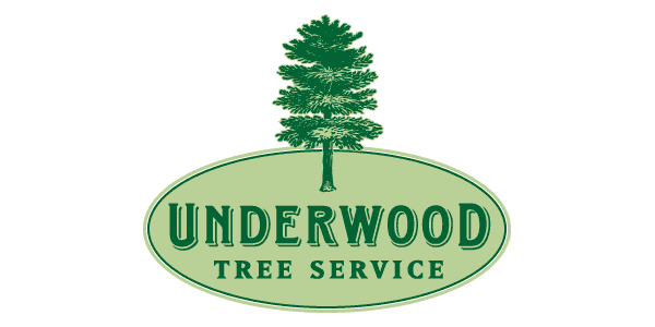 logo design raleigh underwood tree service