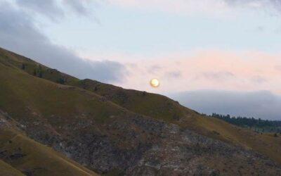 A Lantern in the Dark, Fall Yoga & Meditation Retreat
