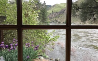 Color in the Canyon, a Retreat for Artists