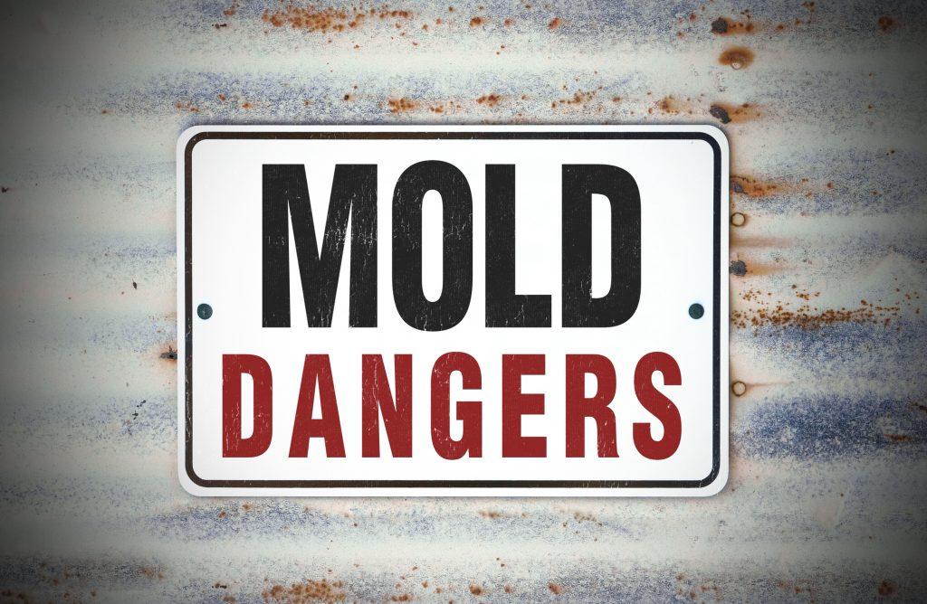 Mold Dangers Sign
