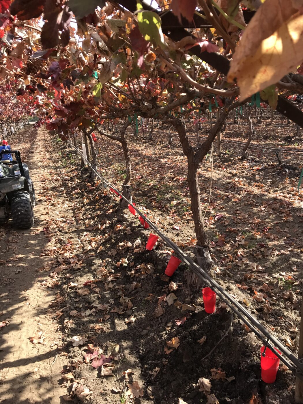 Mobile Lab conducting a DU test in drip system in vineyard