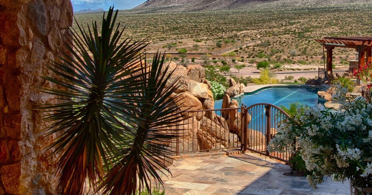 Best plants for Pool Waterfalls