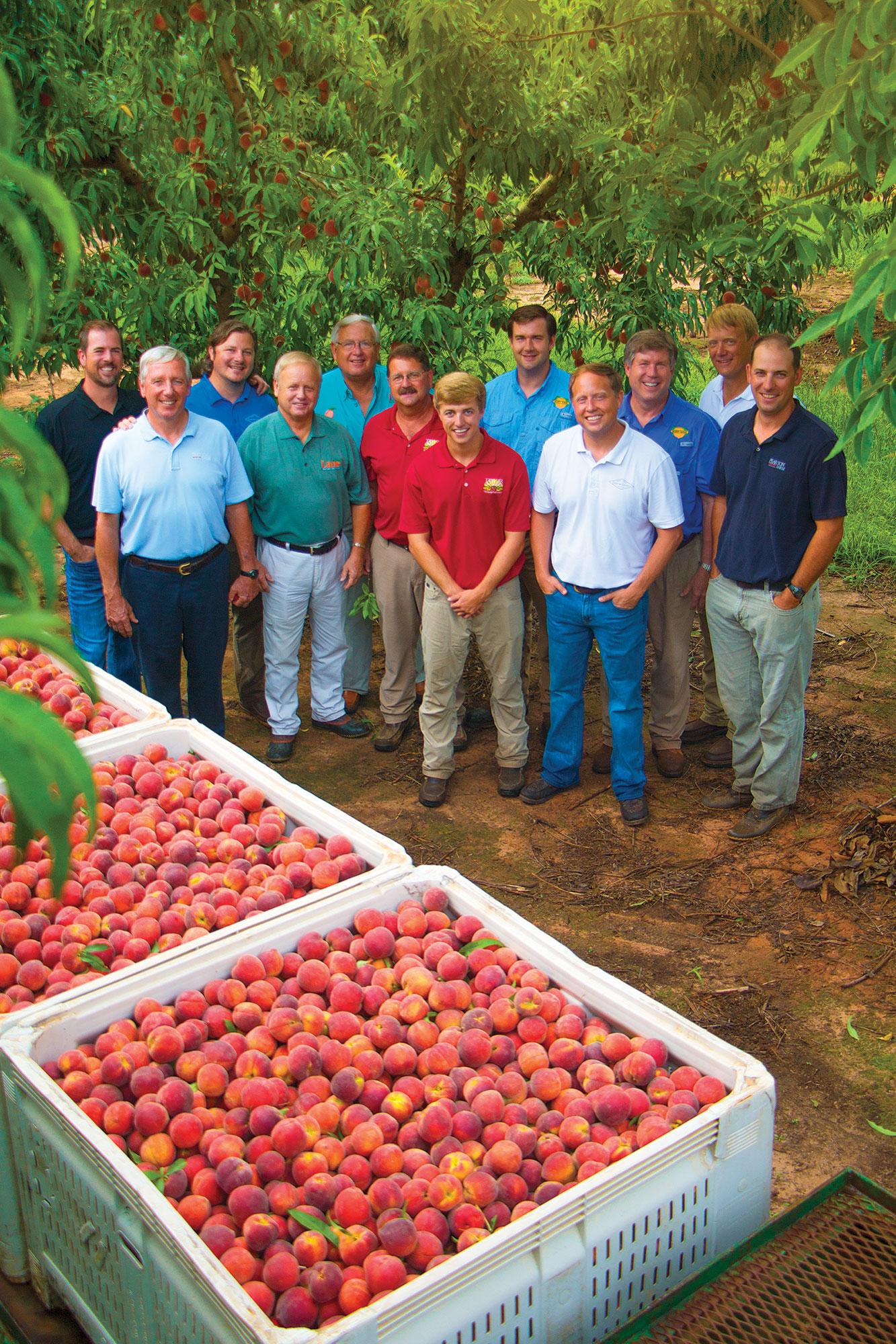 Georgia Peach Farmers - The Peach Pelican