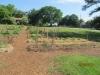 community-garden-5-26-2013-4