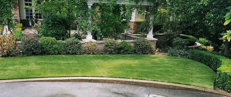 Artificial Grass Project Update