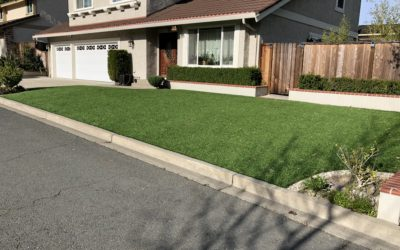10 Year Install Anniversary: Why Artificial Grass Made Sense