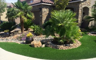 Why Artificial Grass? A New Answer to an Old Question
