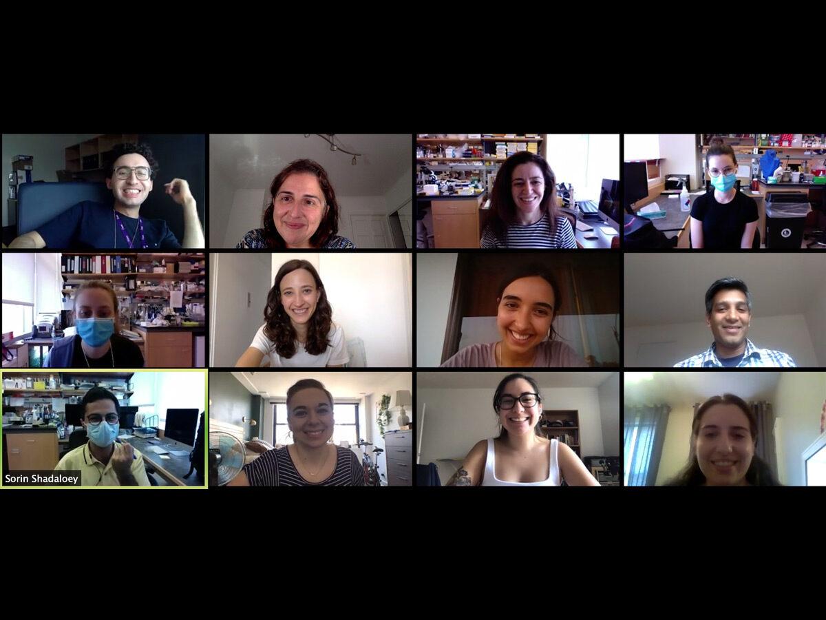 Hernando Lab Team, Lab Life