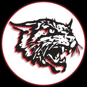 FranklinWildcats23LogoRound
