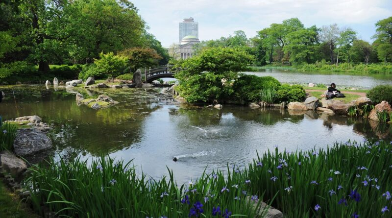 Jackson Park and its Latest Date with History
