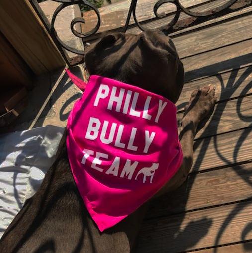 Philly Bully Team Bandana