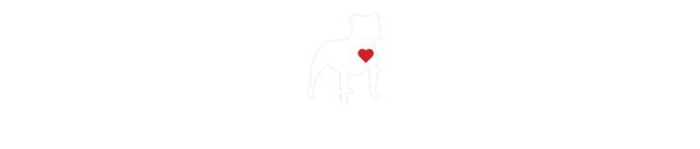 Philly Bully Team logo white