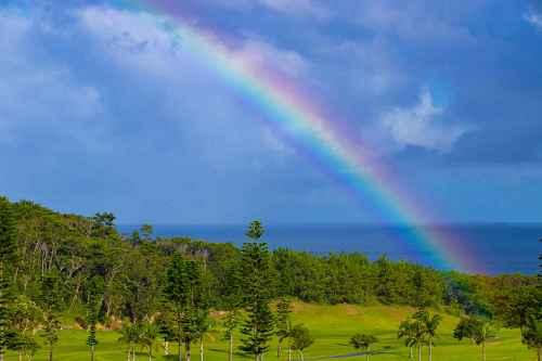 Let the rainbow- sinzuuliveblog