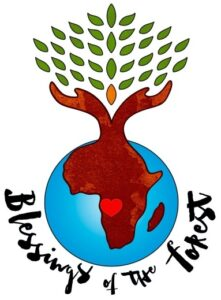 Support iboga conservation efforts by donating to Blessings of the Forest charity.