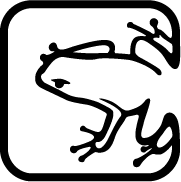 Custom graphic of a frog