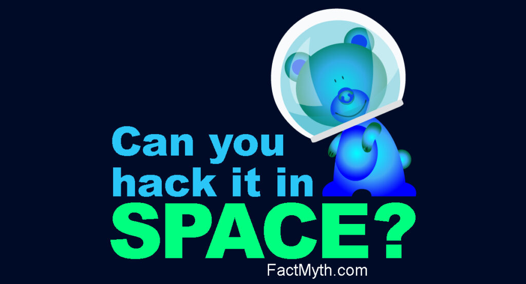 """bluebear in space helmet asking """"Can you hack it in space?"""""""