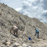 Fossil dig