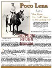 Poco Lena article