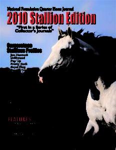 National Foundation Quarter Horse Association Volume I Stallion Edition