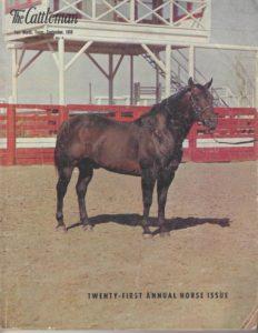 Poco Bueno - Foundation Quarter Horse article