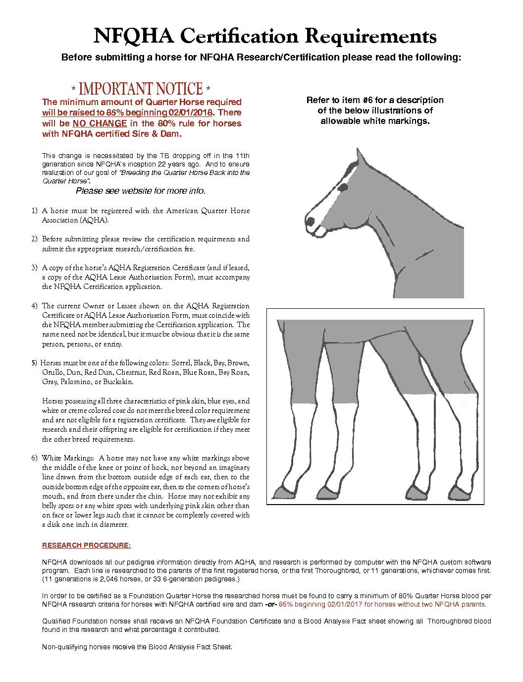 National Foundation Quarter Horse Certification Requirements