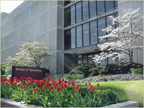 front of optometry building on a spring day tulips blooming in planters