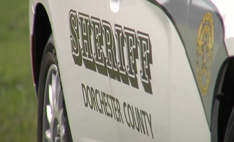 DCSO arrests 18-year-old driver after Saturday night police chase