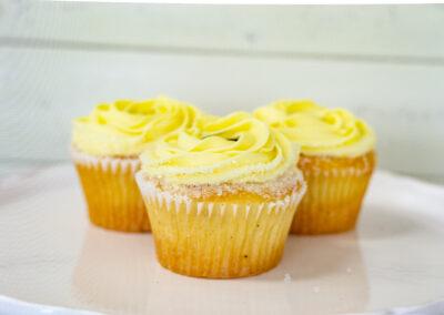 Lemon Blueberry Cupcake