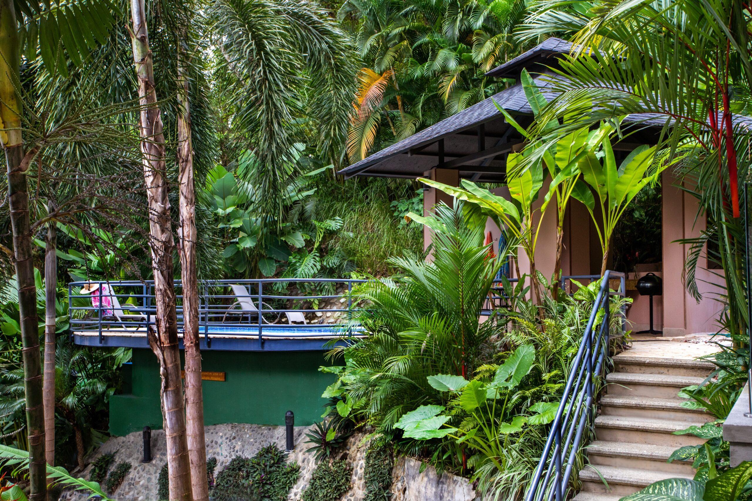 Jungle house pool-10