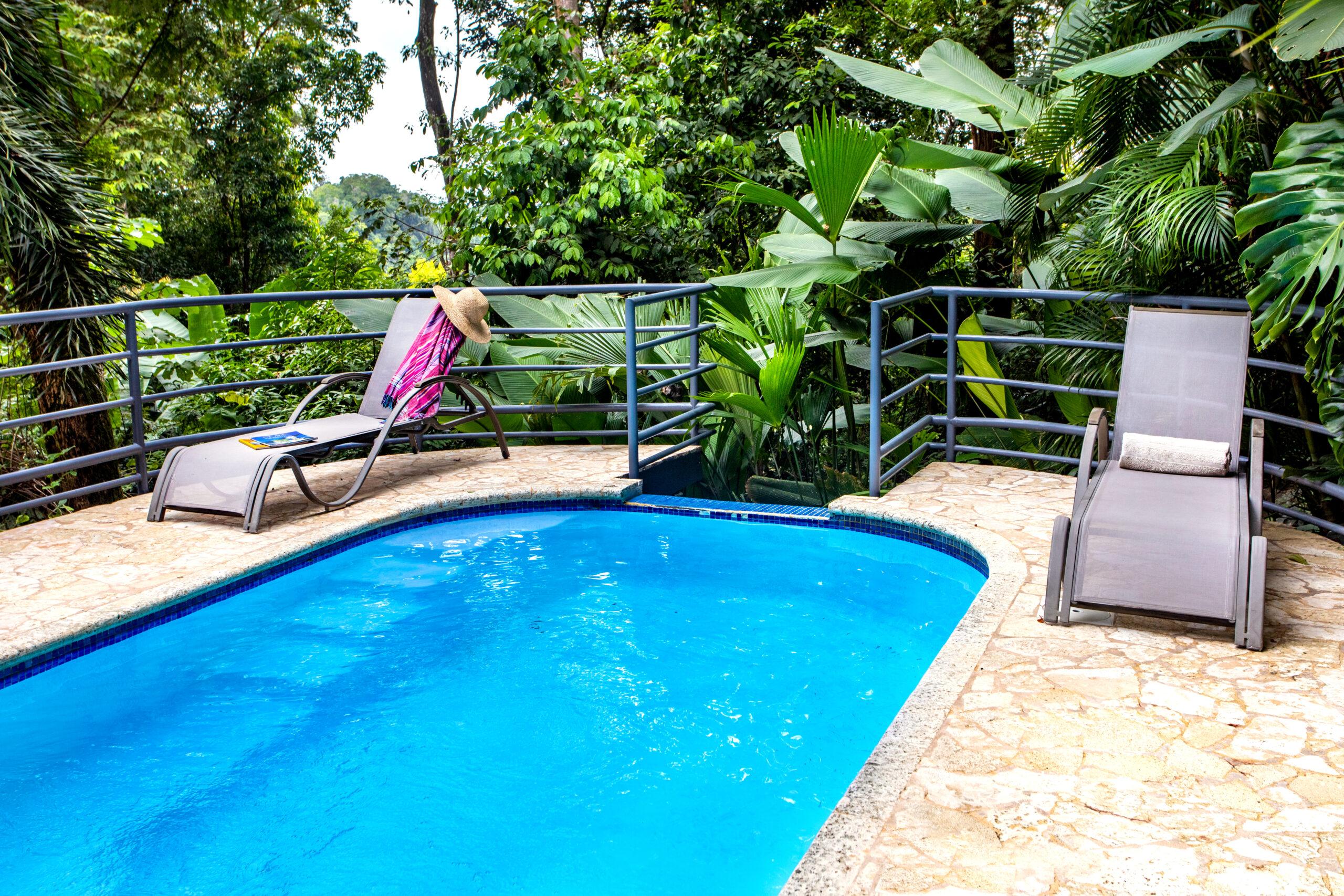 Jungle house pool-7