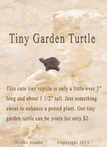 tiny garden turtle set4