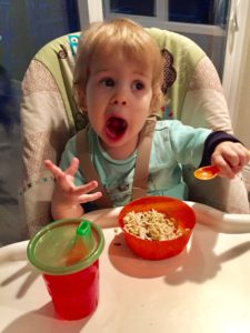 Got Leftovers?! Kid Friendly Meal Ideas for Holiday Leftovers. Our Kids Love 'em!