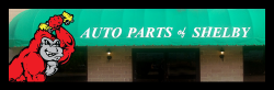Auto Parts of Shelby Header for Login 250x82 px