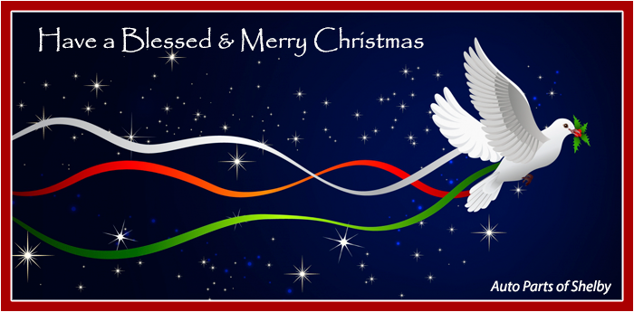 Have a Blessed and Merry Christmas