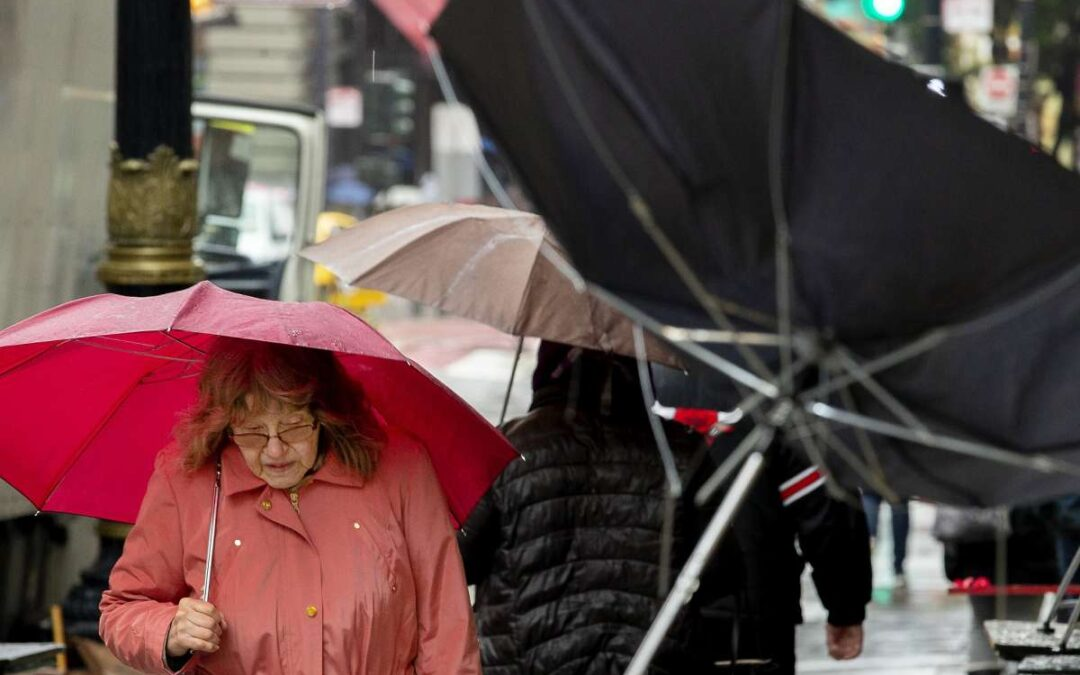 Palm Beach County Attorney Publishes Information on Caring for Elderly During a Storm