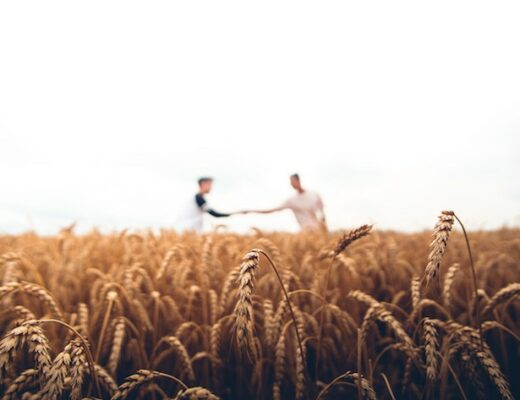 Five Key Verses About Generosity
