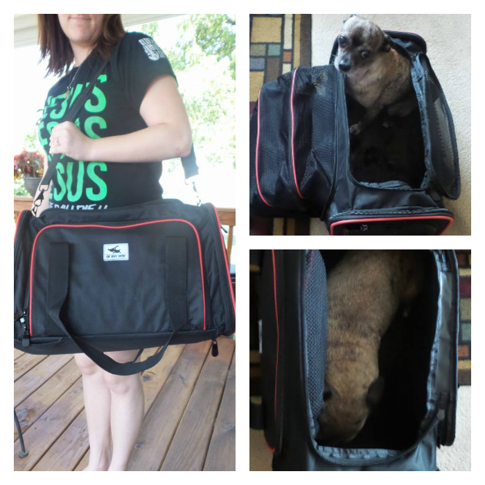 LugaLake Pet Carrier