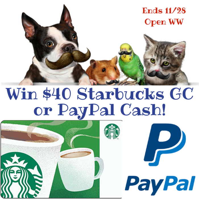 win Starbucks or paypal