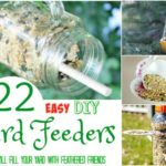 22 Easy DIY Bird Feeders that will Fill Your Yard with Feathered Friends