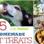 25 of the Tastiest Homemade Pet Treats Your Pets Will Love