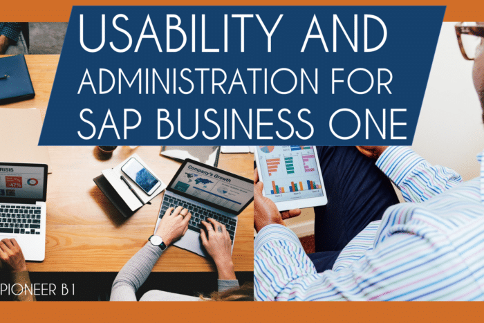 sap business one business user guide 9.3